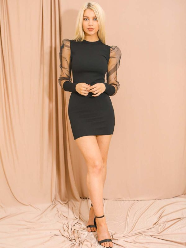 Alia Fishnet Sleeve Bodycon Dress In Black